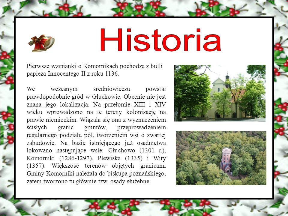 Pierwsze wzmianki o Komornikach pochodzą z bulli papieża Innocentego II z roku 1136. We wczesnym średniowieczu powstał prawdopodobnie gród w Głuchowie