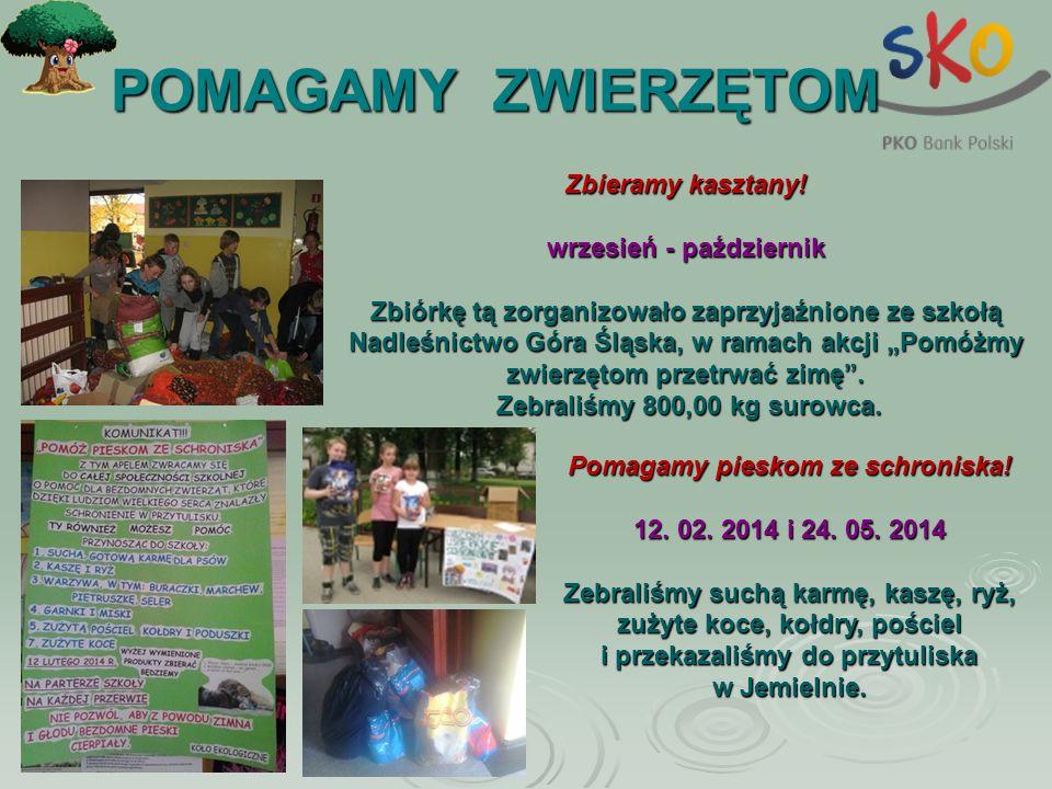 POMAGAMY ZWIERZĘTOM POMAGAMY ZWIERZĘTOM Zbieramy kasztany! wrzesień - październik Zbiórkę tą zorganizowało zaprzyjaźnione ze szkołą Nadleśnictwo Góra