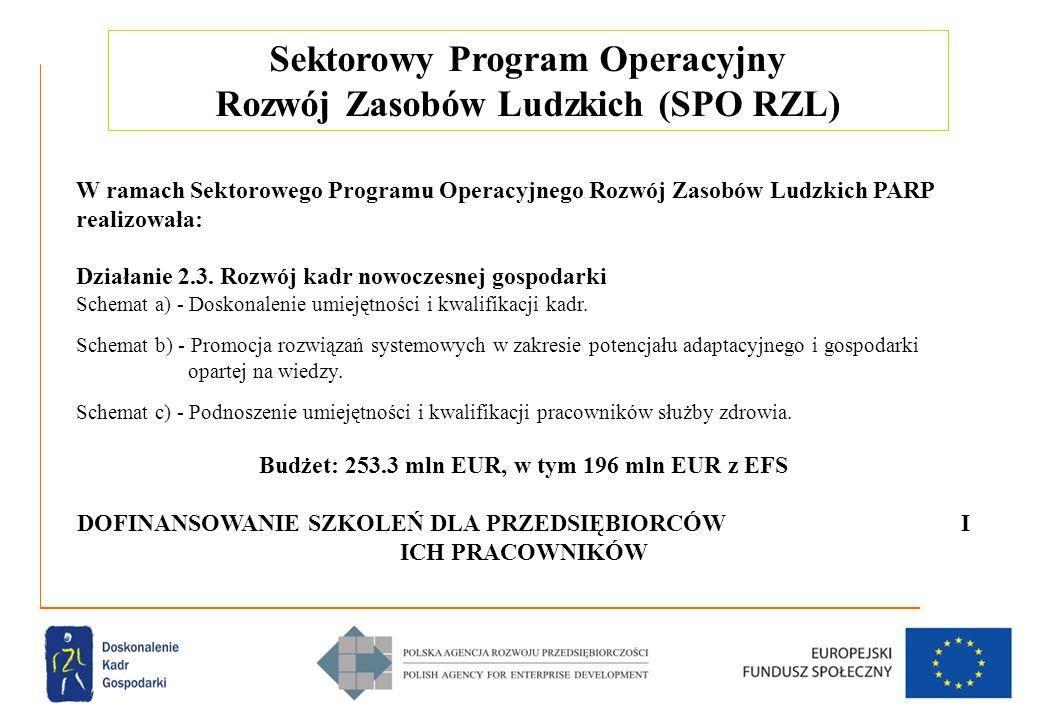 4 Sektorowy Program Operacyjny Rozwój Zasobów Ludzkich (SPO RZL) W ramach Sektorowego Programu Operacyjnego Rozwój Zasobów Ludzkich PARP realizowała: Działanie 2.3.