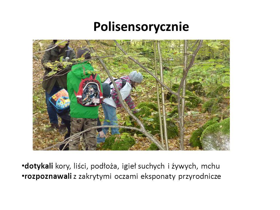 dotykali kory, liści, podłoża, igieł suchych i żywych, mchu rozpoznawali z zakrytymi oczami eksponaty przyrodnicze Polisensorycznie