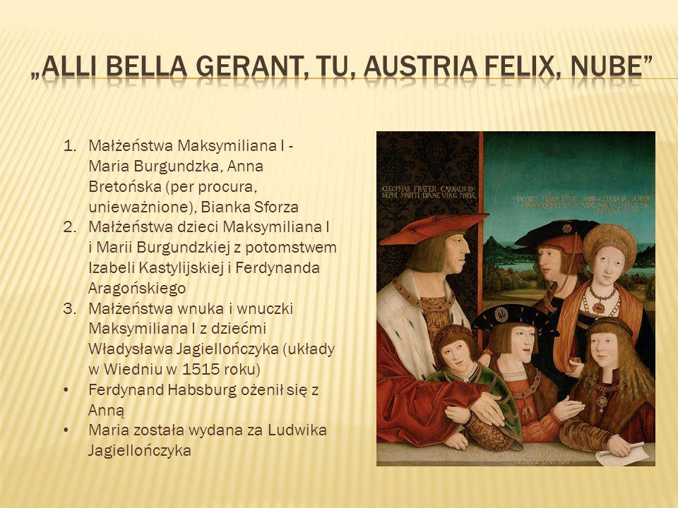 1.Małżeństwa Maksymiliana I - Maria Burgundzka, Anna Bretońska (per procura, unieważnione), Bianka Sforza 2.Małżeństwa dzieci Maksymiliana I i Marii Burgundzkiej z potomstwem Izabeli Kastylijskiej i Ferdynanda Aragońskiego 3.Małżeństwa wnuka i wnuczki Maksymiliana I z dziećmi Władysława Jagiellończyka (układy w Wiedniu w 1515 roku) Ferdynand Habsburg ożenił się z Anną Maria została wydana za Ludwika Jagiellończyka