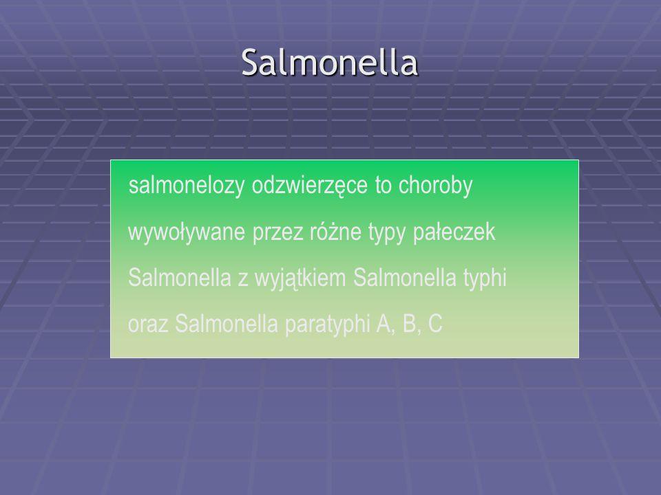 Salmonella salmonelozy odzwierzęce to choroby wywoływane przez różne typy pałeczek Salmonella z wyjątkiem Salmonella typhi oraz Salmonella paratyphi A