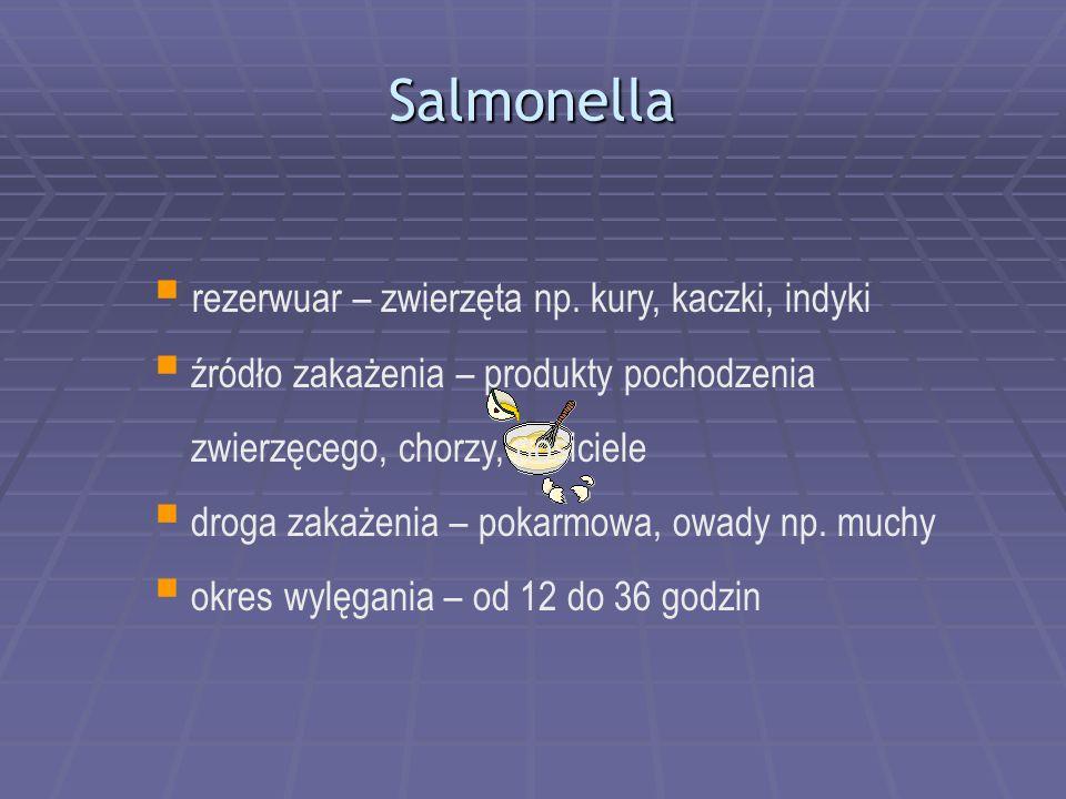 Salmonella  rezerwuar – zwierzęta np.