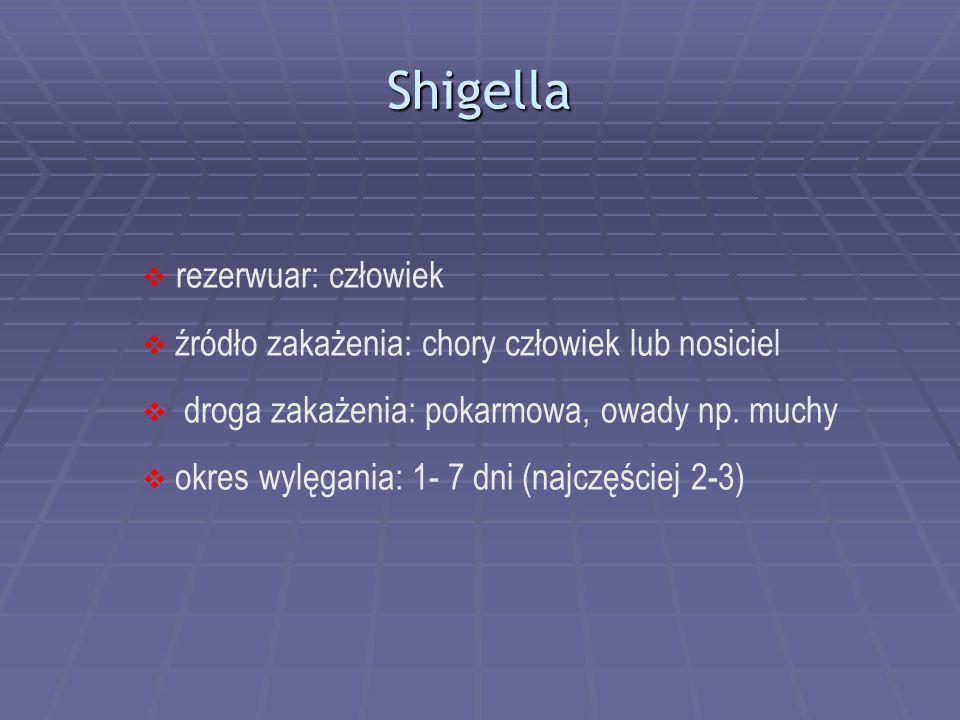 Shigella  rezerwuar: człowiek  źródło zakażenia: chory człowiek lub nosiciel  droga zakażenia: pokarmowa, owady np. muchy  okres wylęgania: 1- 7 d