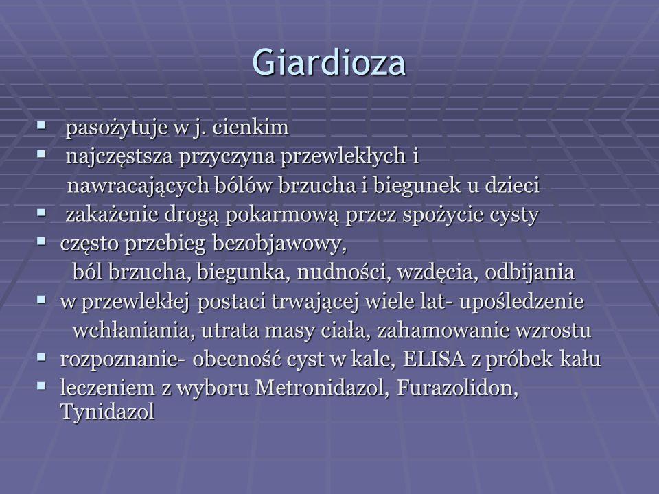 Giardioza  pasożytuje w j. cienkim  najczęstsza przyczyna przewlekłych i nawracających bólów brzucha i biegunek u dzieci nawracających bólów brzucha