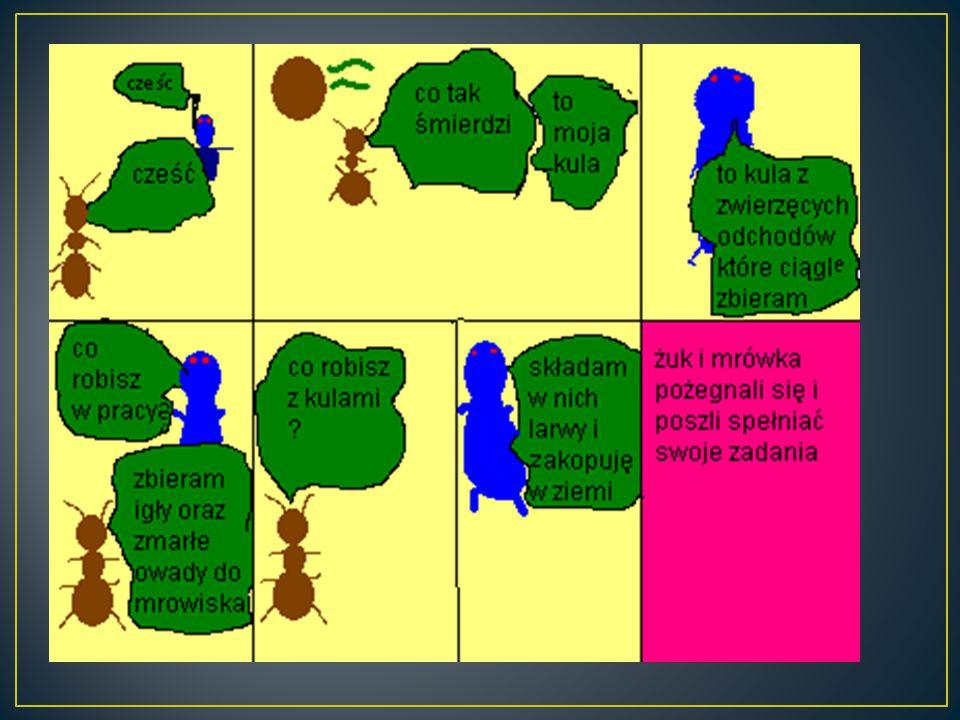 Twórca : Sebastian Jankowski Wiek : lat 12 Klasa: klasa V Szkoła : Szkoła Podstawowa w Koloni 83-328 Sianowo