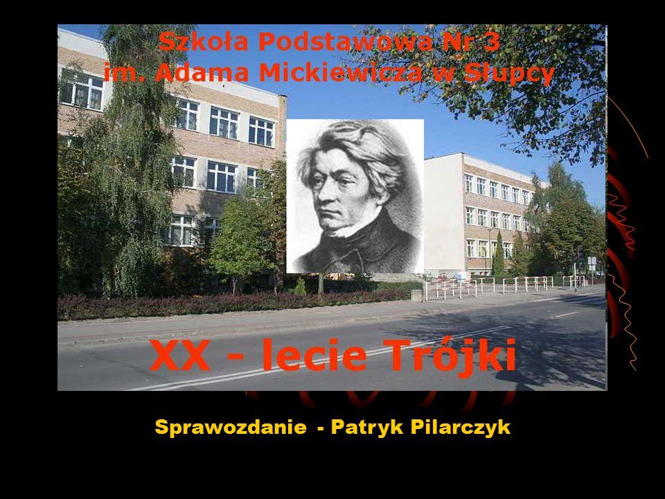 Sprawozdanie - Patryk Pilarczyk