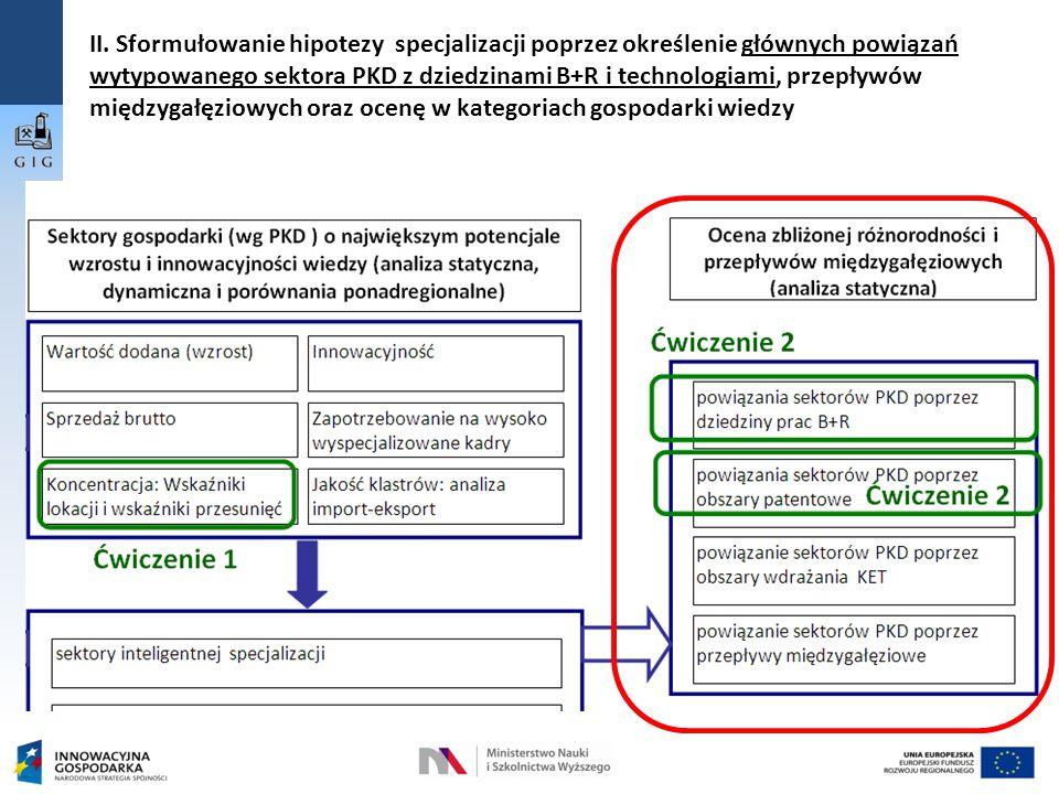 II. Sformułowanie hipotezy specjalizacji poprzez określenie głównych powiązań wytypowanego sektora PKD z dziedzinami B+R i technologiami, przepływów m
