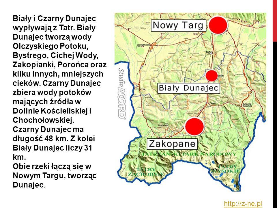 Biały i Czarny Dunajec wypływają z Tatr. Biały Dunajec tworzą wody Olczyskiego Potoku, Bystrego, Cichej Wody, Zakopianki, Porońca oraz kilku innych, m