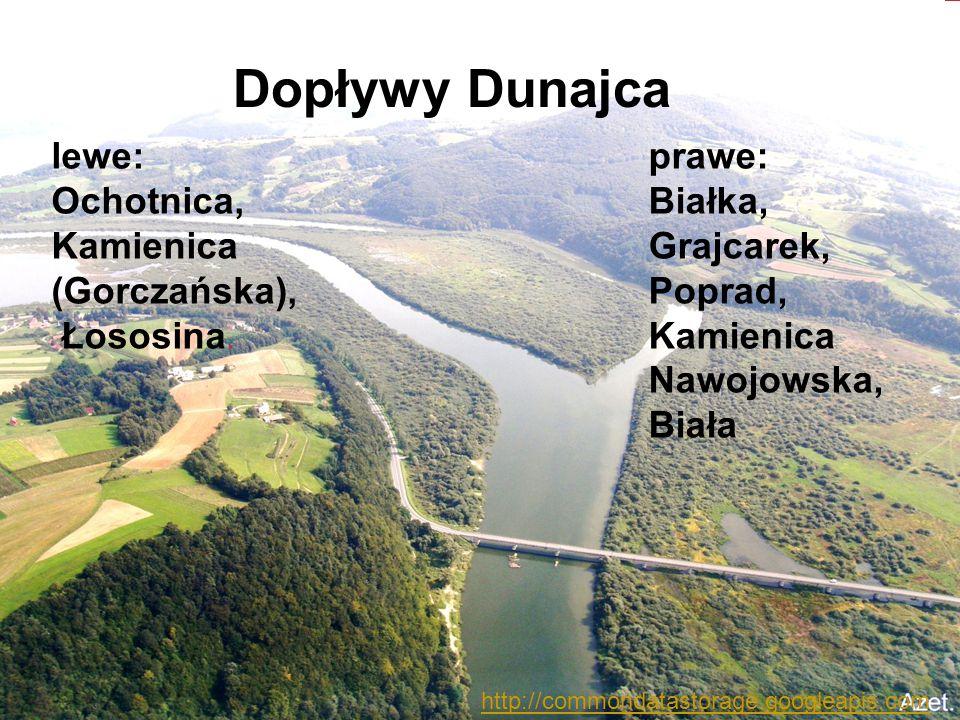 Dopływy Dunajca prawe: Białka, Grajcarek, Poprad, Kamienica Nawojowska, Biała lewe: Ochotnica, Kamienica (Gorczańska), Łososina. http://commondatastor