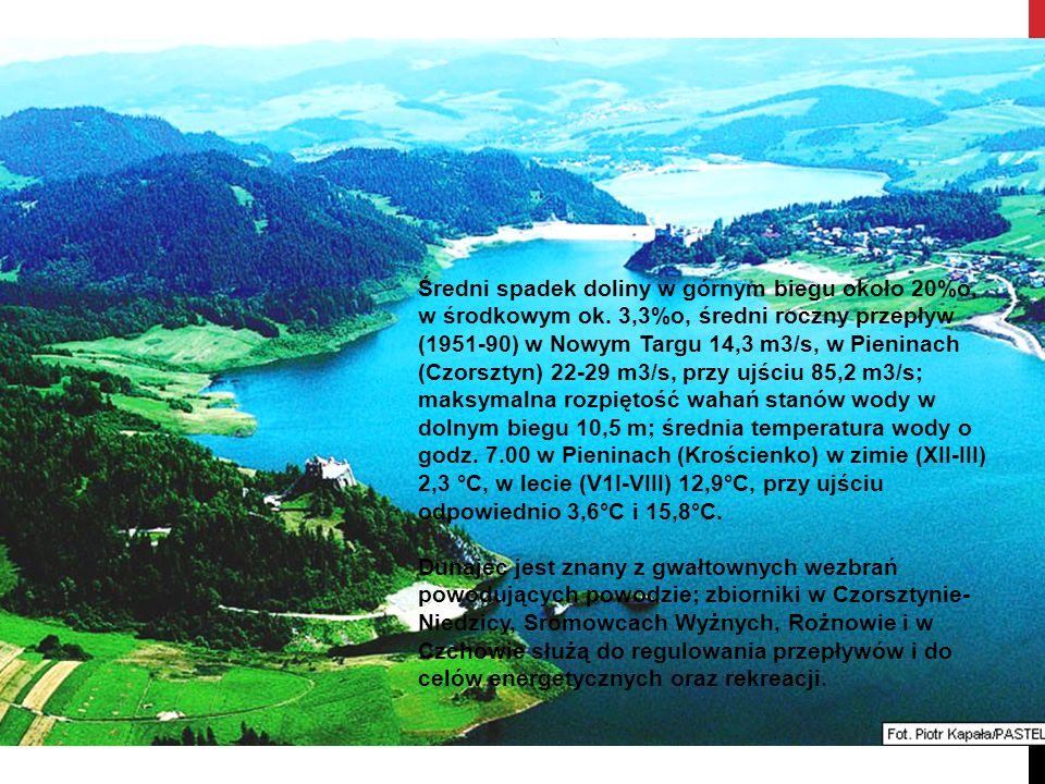 Średni spadek doliny w górnym biegu około 20%o, w środkowym ok. 3,3%o, średni roczny przepływ (1951-90) w Nowym Targu 14,3 m3/s, w Pieninach (Czorszty