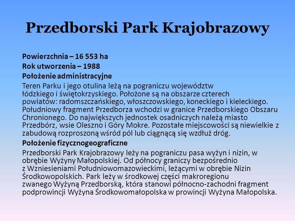 Przedborski Park Krajobrazowy Powierzchnia – 16 553 ha Rok utworzenia – 1988 Położenie administracyjne Teren Parku i jego otulina leżą na pograniczu w