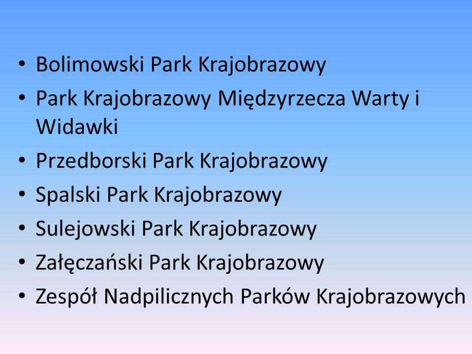 Bolimowski Park Krajobrazowy Park Krajobrazowy Międzyrzecza Warty i Widawki Przedborski Park Krajobrazowy Spalski Park Krajobrazowy Sulejowski Park Kr