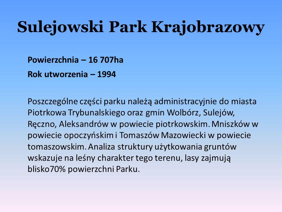 Sulejowski Park Krajobrazowy Powierzchnia – 16 707ha Rok utworzenia – 1994 Poszczególne części parku należą administracyjnie do miasta Piotrkowa Trybu