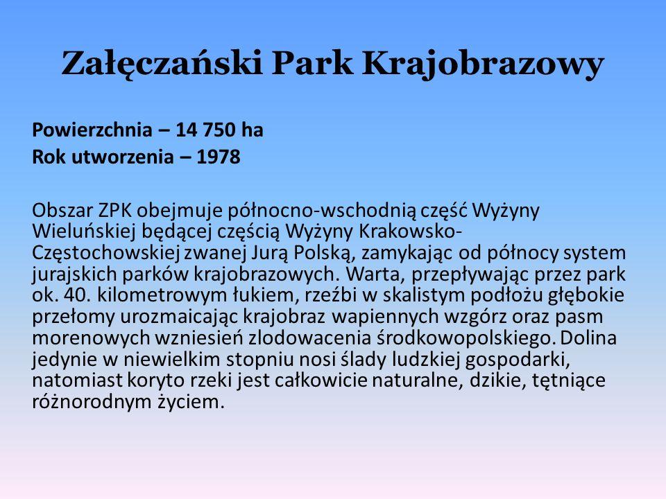 Załęczański Park Krajobrazowy Powierzchnia – 14 750 ha Rok utworzenia – 1978 Obszar ZPK obejmuje północno-wschodnią część Wyżyny Wieluńskiej będącej c