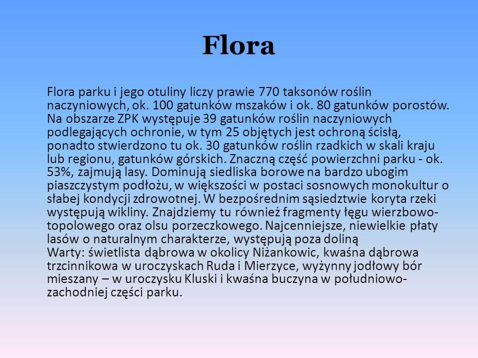 Flora Flora parku i jego otuliny liczy prawie 770 taksonów roślin naczyniowych, ok. 100 gatunków mszaków i ok. 80 gatunków porostów. Na obszarze ZPK w