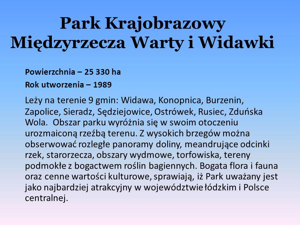 Park Krajobrazowy Międzyrzecza Warty i Widawki Powierzchnia – 25 330 ha Rok utworzenia – 1989 Leży na terenie 9 gmin: Widawa, Konopnica, Burzenin, Zap