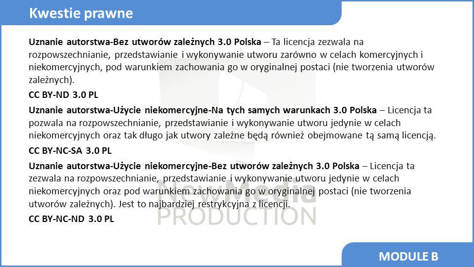 MODULE B Uznanie autorstwa-Bez utworów zależnych 3.0 Polska – Ta licencja zezwala na rozpowszechnianie, przedstawianie i wykonywanie utworu zarówno w