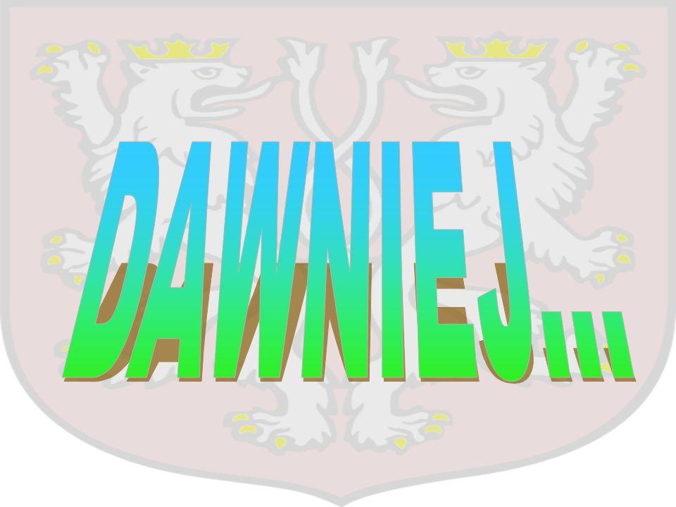 Prowadzi działalność w Kątach Wrocławskich w branży spożywczej od 1995 roku.