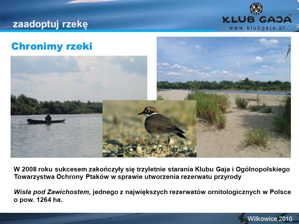 w w w. k l u b g a j a. p l Wilkowice 2010 zaadoptuj rzekę W 2008 roku sukcesem zakończyły się trzyletnie starania Klubu Gaja i Ogólnopolskiego Towarz