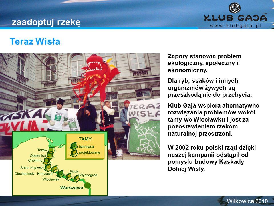 Teraz Wisła w w w. k l u b g a j a. p l Wilkowice 2010 zaadoptuj rzekę Zapory stanowią problem ekologiczny, społeczny i ekonomiczny. Dla ryb, ssaków i