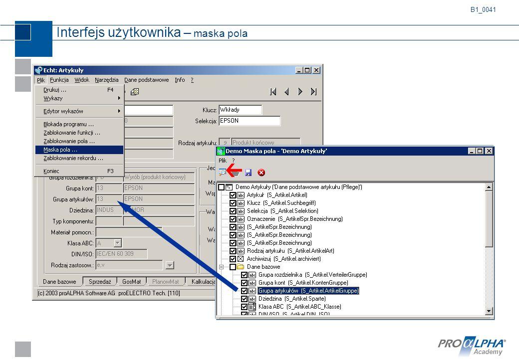 Academy Interfejs użytkownika – maska pola B1_0041