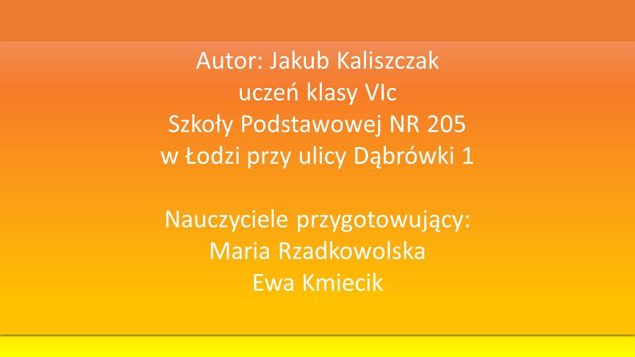 Autor: Jakub Kaliszczak uczeń klasy VIc Szkoły Podstawowej NR 205 w Łodzi przy ulicy Dąbrówki 1 Nauczyciele przygotowujący: Maria Rzadkowolska Ewa Kmi
