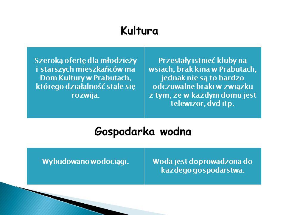 Kultura Szeroką ofertę dla młodzieży i starszych mieszkańców ma Dom Kultury w Prabutach, którego działalność stale się rozwija.