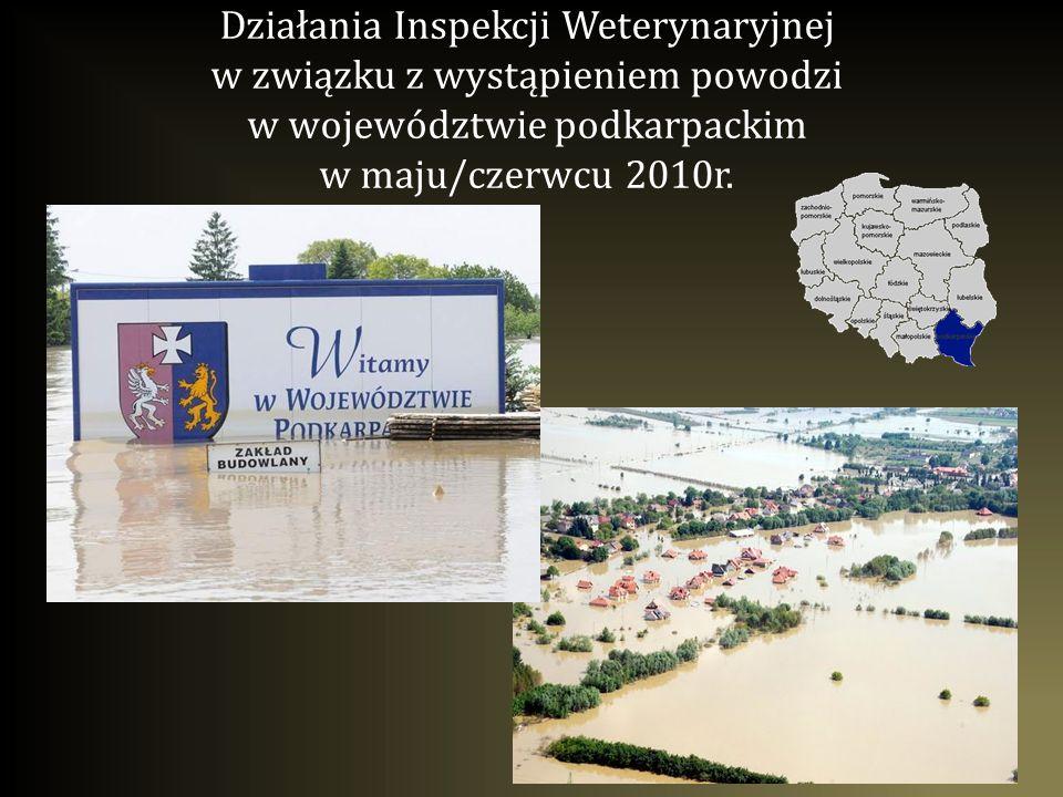 Działania Inspekcji Weterynaryjnej w związku z wystąpieniem powodzi w województwie podkarpackim w maju/czerwcu 2010r.