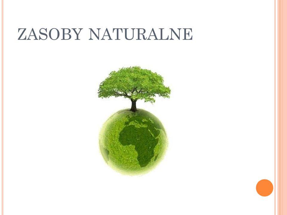 ZASOBY NATURALNE
