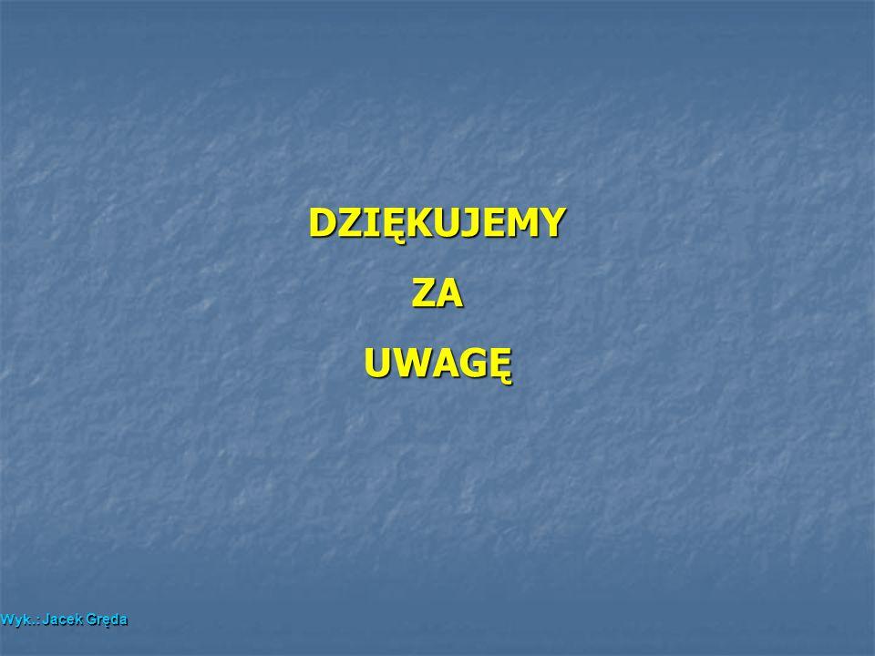 DZIĘKUJEMYZAUWAGĘ Wyk.: Jacek Gręda