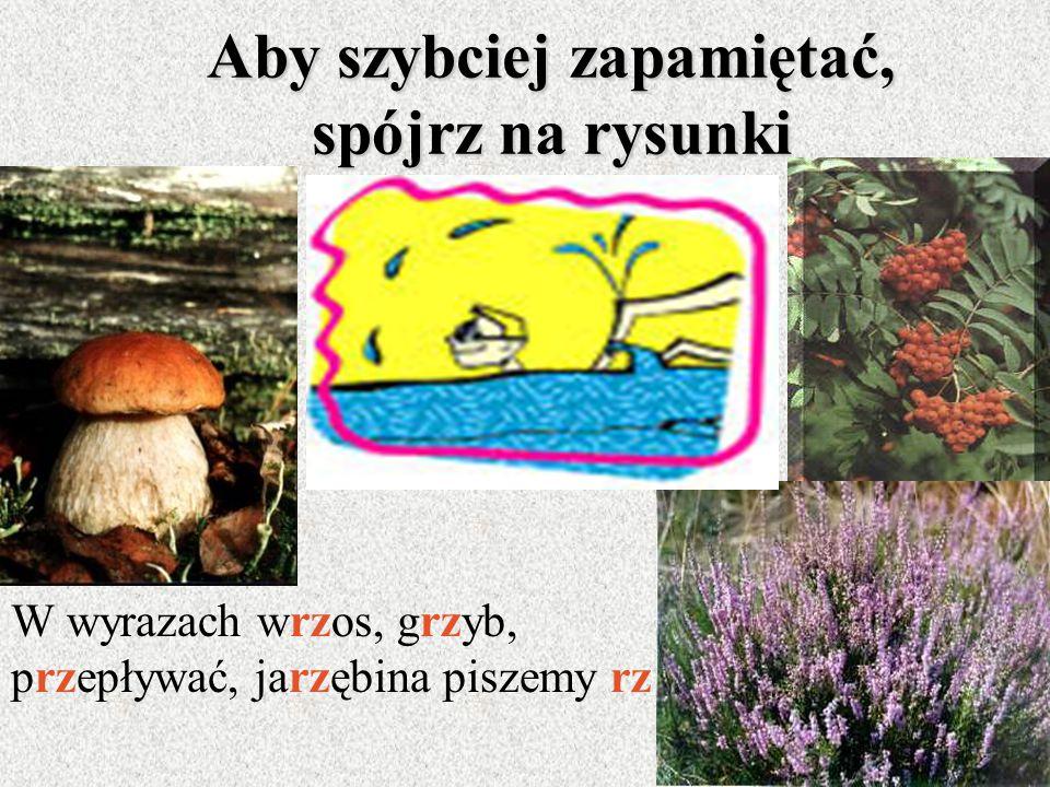 Połączenie literowe rz piszemy: przebójbrzozakrzyżgrzyb brzyduladojrzaływrzosydrzewo wrzesieńkrzyczećdrzemaćtrzeba przepływaćspojrzeniechrzankrzew