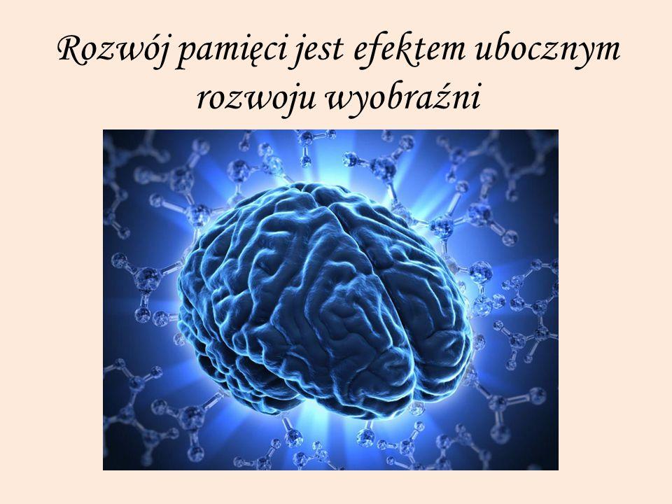 Rozwój pamięci jest efektem ubocznym rozwoju wyobraźni