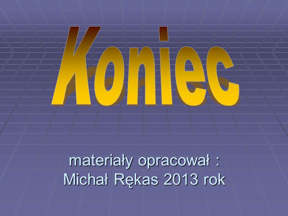materiały opracował : Michał Rękas 2013 rok