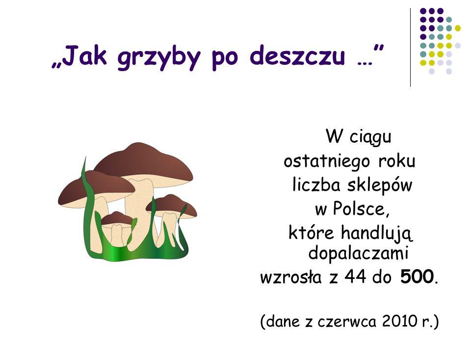 """""""Jak grzyby po deszczu … W ciągu ostatniego roku liczba sklepów w Polsce, które handlują dopalaczami wzrosła z 44 do 500."""
