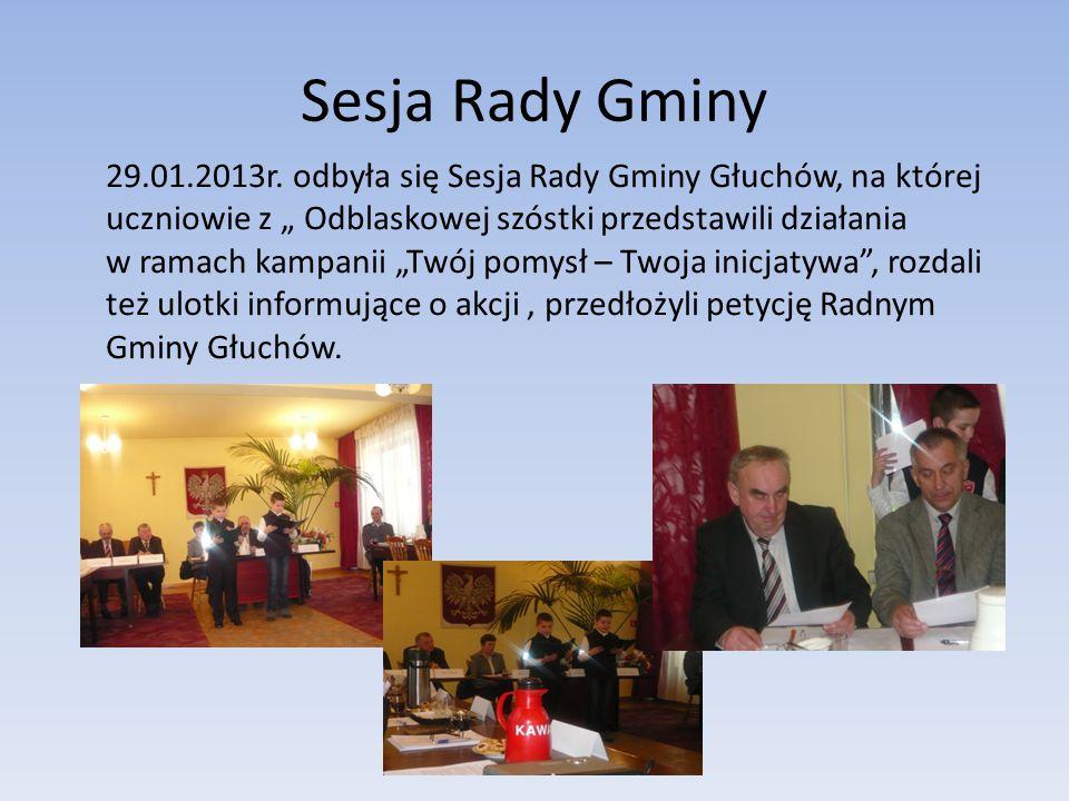 Sesja Rady Gminy 29.01.2013r.