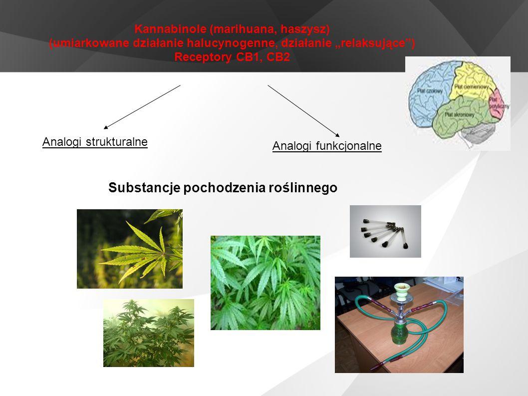 """Kannabinole (marihuana, haszysz) (umiarkowane działanie halucynogenne, działanie """"relaksujące"""") Receptory CB1, CB2 Analogi strukturalne Analogi funkcj"""
