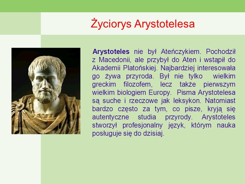 Życiorys Arystotelesa Arystoteles nie był Ateńczykiem.