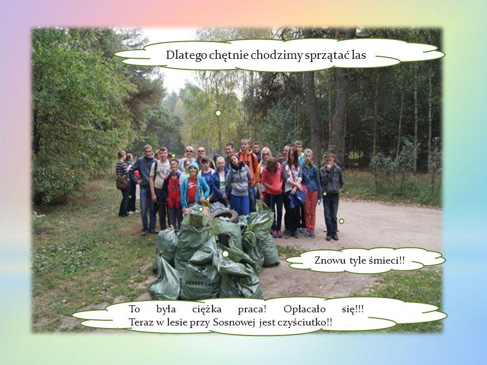 To była ciężka praca! Opłacało się!!! Teraz w lesie przy Sosnowej jest czyściutko!! Znowu tyle śmieci!! Dlatego chętnie chodzimy sprzątać las.