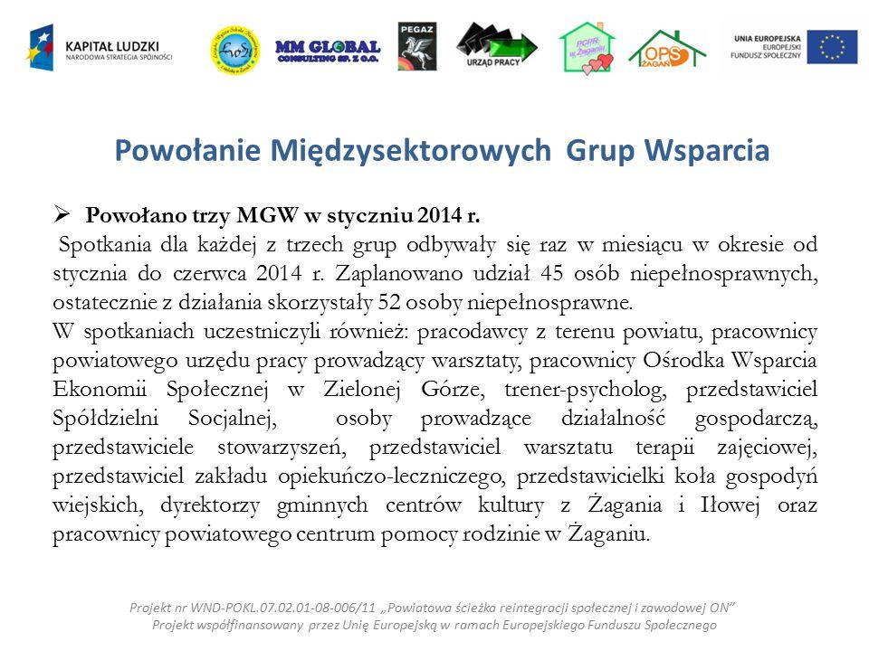 Powołanie Międzysektorowych Grup Wsparcia  Powołano trzy MGW w styczniu 2014 r. Spotkania dla każdej z trzech grup odbywały się raz w miesiącu w okre