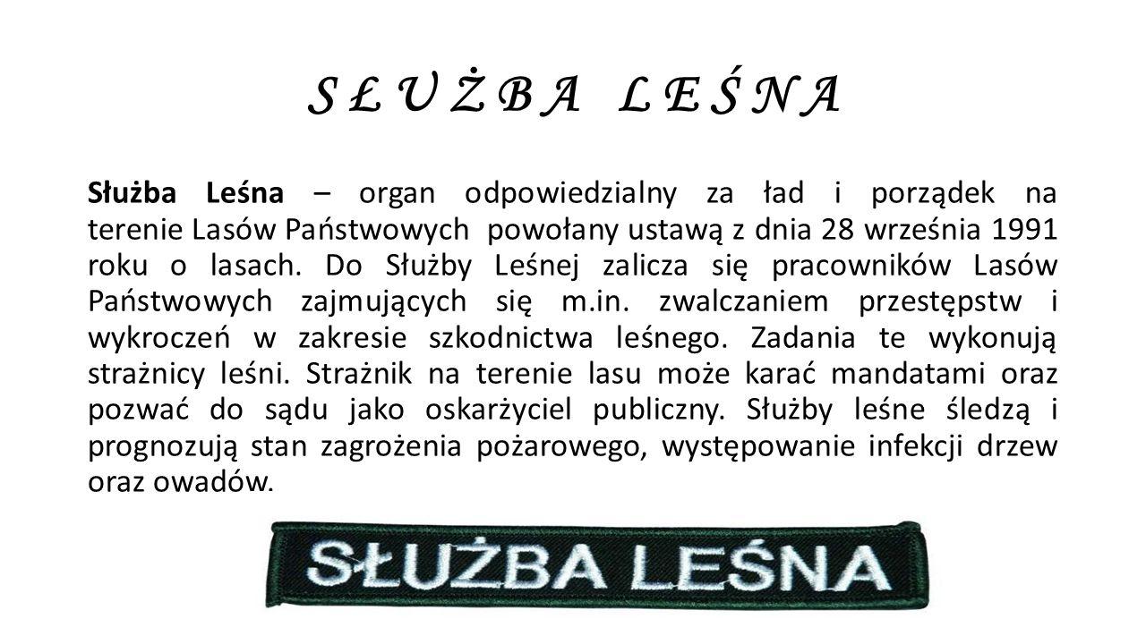 S Ł U Ż B A L E Ś N A Służba Leśna – organ odpowiedzialny za ład i porządek na terenie Lasów Państwowych powołany ustawą z dnia 28 września 1991 roku