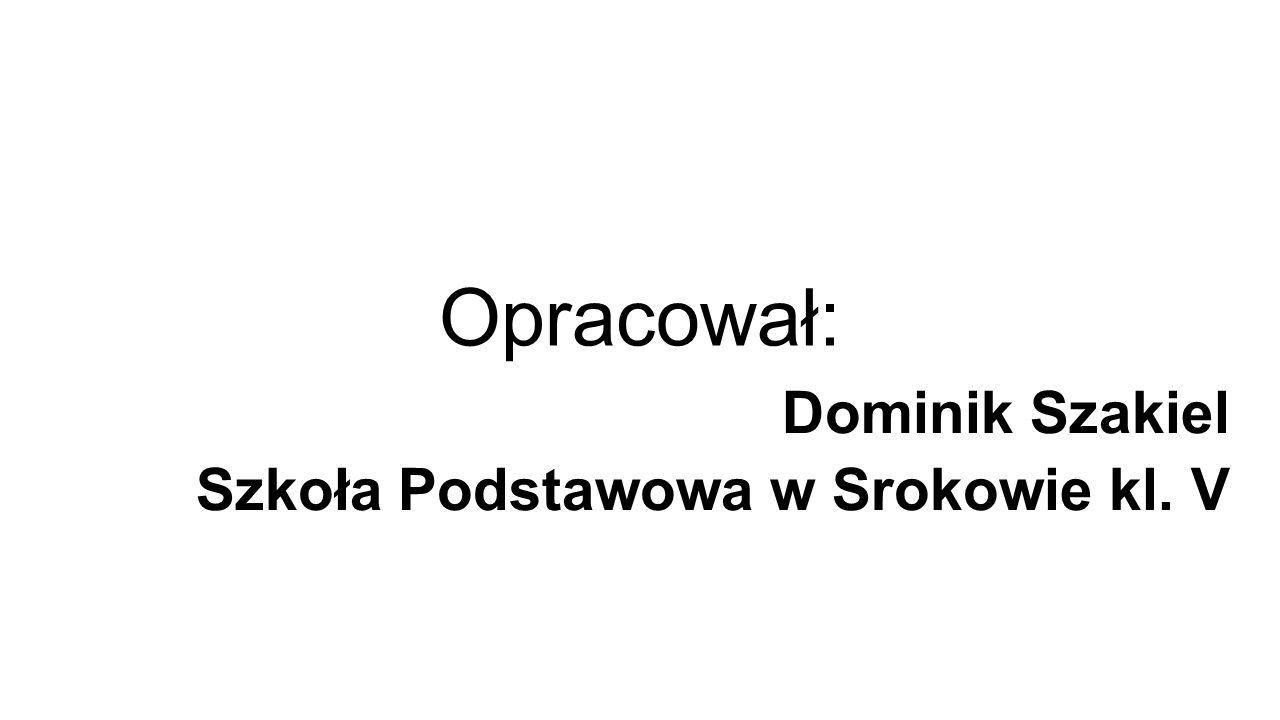 Opracował: Dominik Szakiel Szkoła Podstawowa w Srokowie kl. V