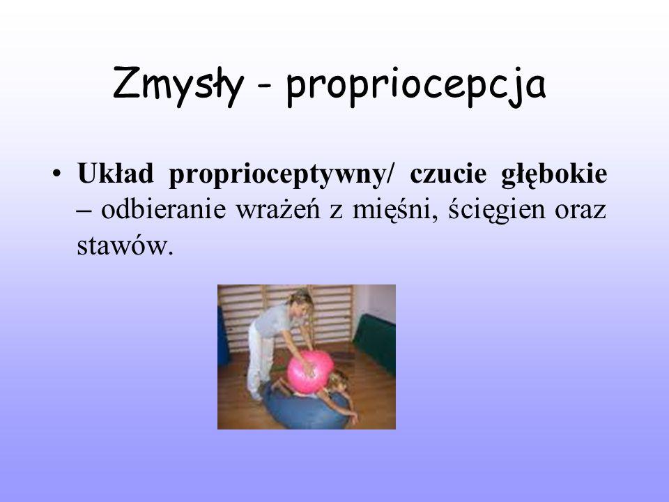 Zmysły - propriocepcja Układ proprioceptywny/ czucie głębokie – odbieranie wrażeń z mięśni, ścięgien oraz stawów.