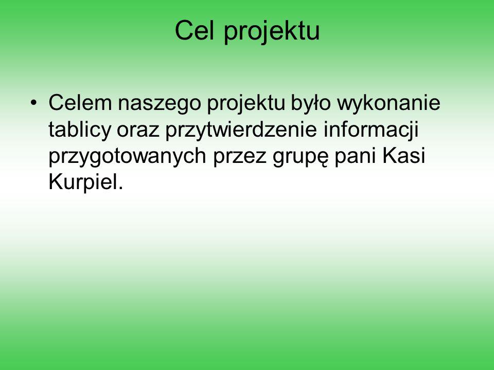 Cel projektu Celem naszego projektu było wykonanie tablicy oraz przytwierdzenie informacji przygotowanych przez grupę pani Kasi Kurpiel.