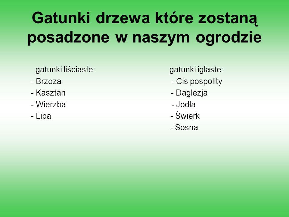Gatunki drzewa które zostaną posadzone w naszym ogrodzie gatunki liściaste: gatunki iglaste: - Brzoza - Cis pospolity - Kasztan - Daglezja - Wierzba -