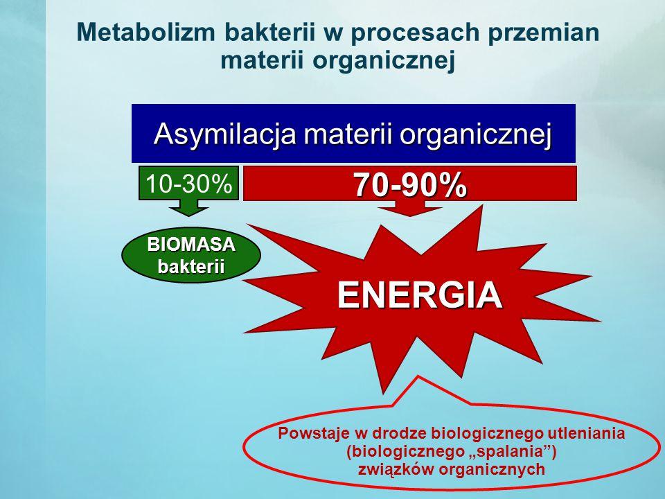 """Metabolizm bakterii w procesach przemian materii organicznej 10-30% Asymilacja materii organicznej 70-90% BIOMASAbakterii ENERGIA Powstaje w drodze biologicznego utleniania (biologicznego """"spalania ) związków organicznych"""