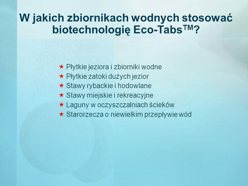 W jakich zbiornikach wodnych stosować biotechnologię Eco-Tabs TM ?  Płytkie jeziora i zbiorniki wodne  Płytkie zatoki dużych jezior  Stawy rybackie