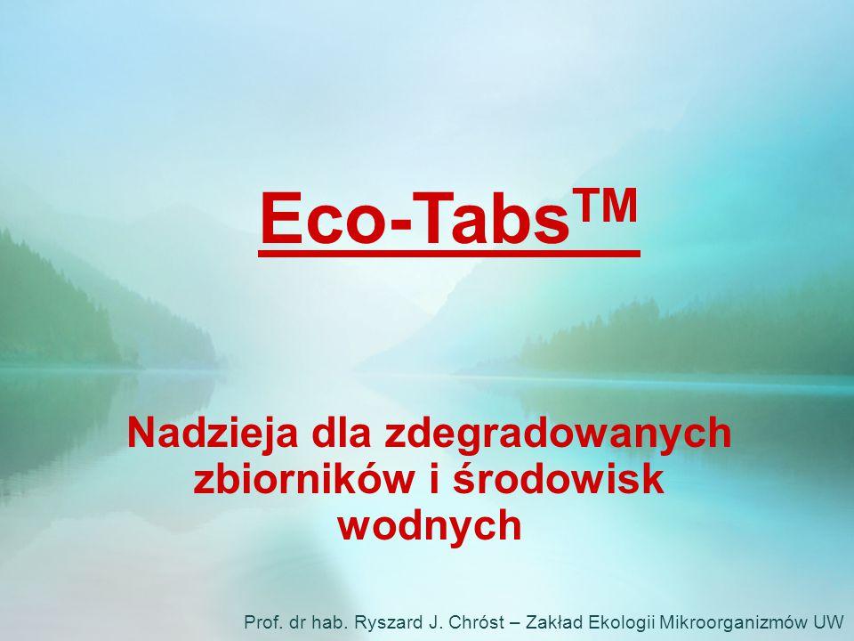 Eco-Tabs TM Nadzieja dla zdegradowanych zbiorników i środowisk wodnych Prof. dr hab. Ryszard J. Chróst – Zakład Ekologii Mikroorganizmów UW
