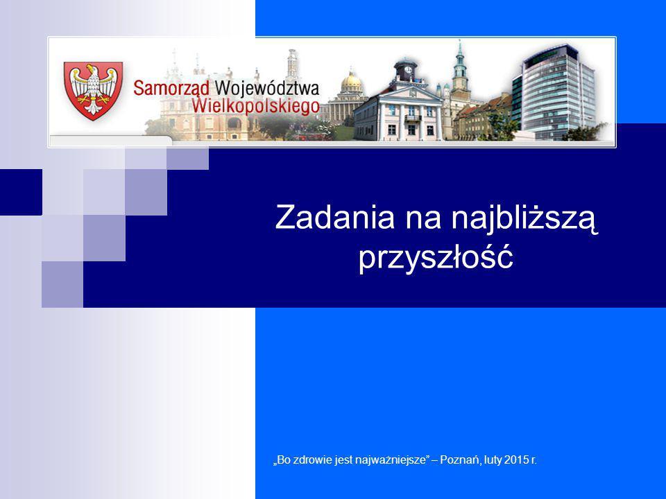 """Zadania na najbliższą przyszłość """"Bo zdrowie jest najważniejsze"""" – Poznań, luty 2015 r."""