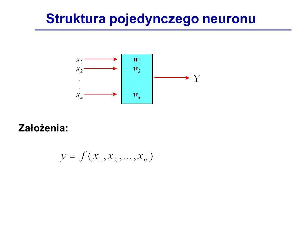 Struktura pojedynczego neuronu Założenia: